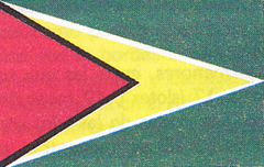 imagen bandera de guayana
