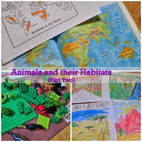 Animals and their Habitats Lesson Two