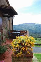 Castagno Caccia_Gambassi_17