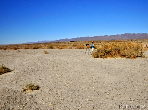 22. me at the salton sea-gusto