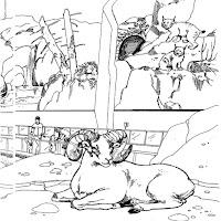 animaatjes-dierentuin-40167.jpg