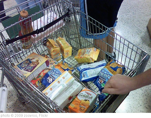 'My Summer Grocery Cart.' photo (c) 2009, zoovroo - license: http://creativecommons.org/licenses/by/2.0/