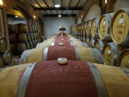 Drumul vinului -Basarabia: Crama Chateau Vartely