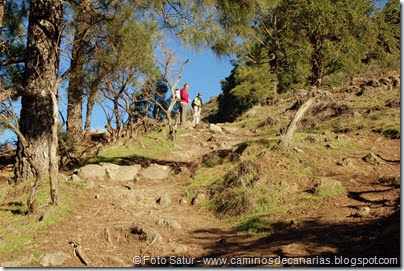 7011 Cruz Teeda-Artenara-Guardaya(El Salviar)