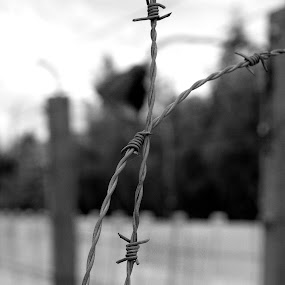 Never again pt. 2 by Christine Schmidt - Black & White Buildings & Architecture ( history, never again, third reich )