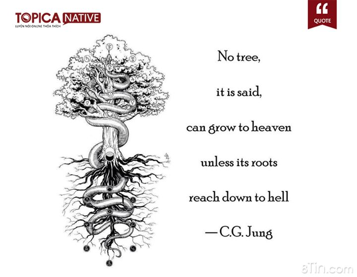Dịch nghĩa Quote hay nào! No tree, it is said, can grow