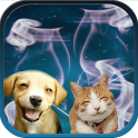 Cat + Dog Sound effects icon