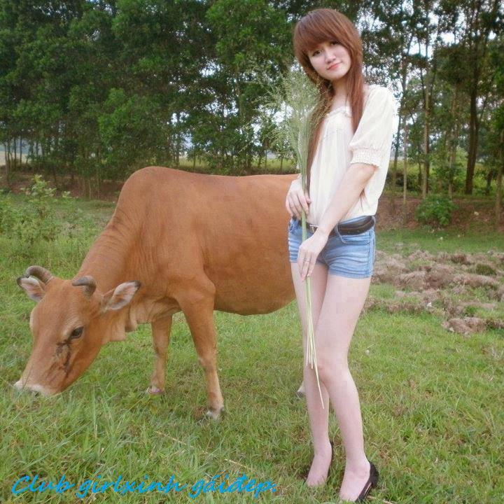 xin lỗi em chỉ là cô bé chăn bò