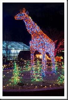 2011Dec31-Brookside-Gardens-74