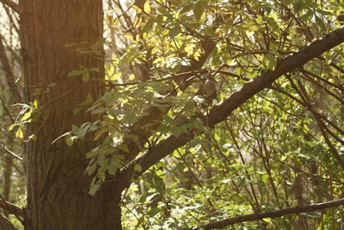 20081009 (1) (Small)