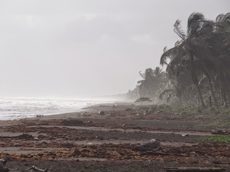 06. Pe malul Marii Caraibelor.JPG