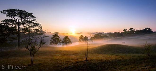 Lại là Đà Lạt, nơi có bốn mùa đều đẹp và thơ mộng như tranh vẽ <3