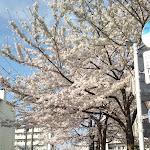 2013-03-28 15.48.19.JPG