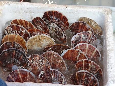 Crabi pe insula Lantau
