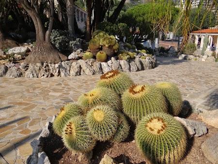 08. Jardin Exotique.JPG