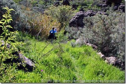 7653 El Aserrador-Paso Herradura(barranco Ayacata)