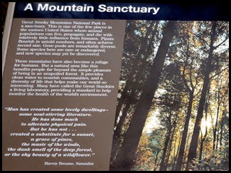 11e2 - Newfound Gap Stop - A Mountain Sanctuary