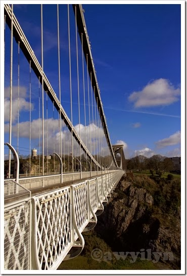 Suspension Bridge IV