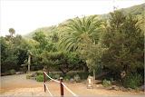 El Drago Park