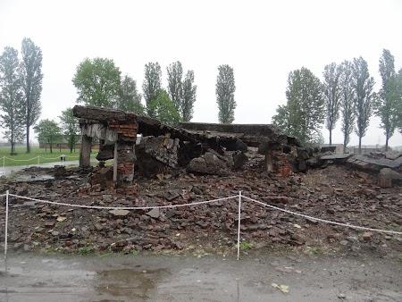 29. Birkenau.JPG