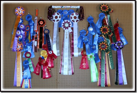 2013-2014 Jakes ribbons