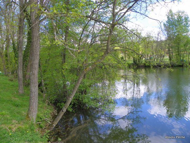 Petit lac photo #1146