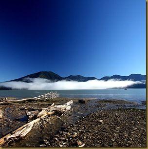 Driftwood beach clouds reflection