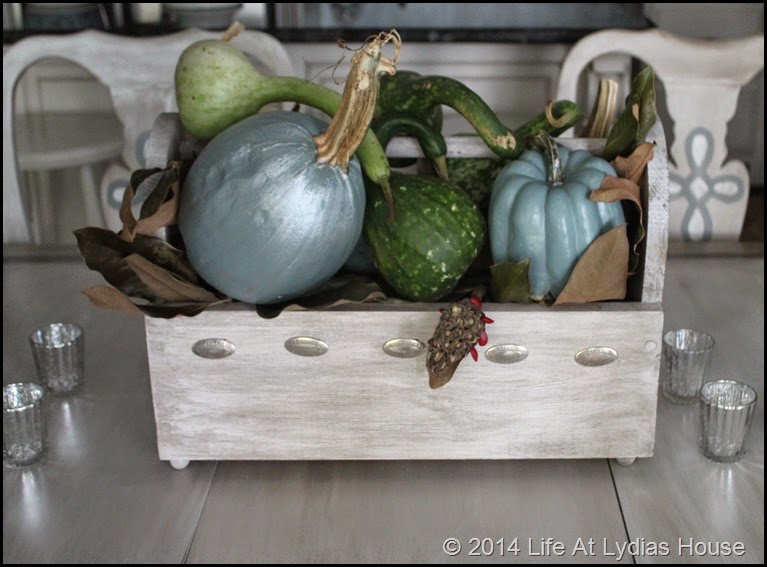 box of pumpkins and gourds 2