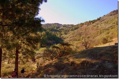3336 Cueva Grande-Llanos Pez