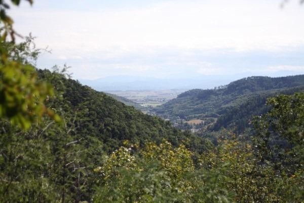 Holidays in Austria 03