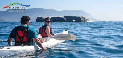 Paddle your seakayak in the warm waters of FalseBay discovering the Penguins