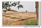 佛陀的故鄉Ancient Buddhist Site -Kapilavastu 古代佛教遺址-印度迦比羅衛