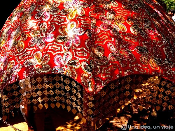 India-Kerala-fotos-con-colores-18.jpg