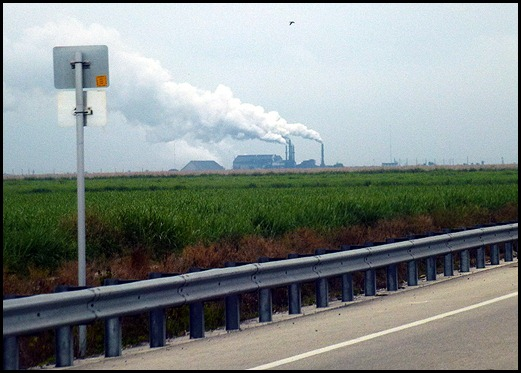 06 - Sugar Cane Processing Plant along Route 27