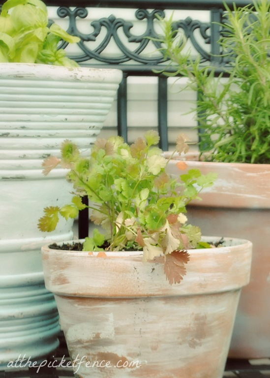 How to age garden pots from At The Picket Fence