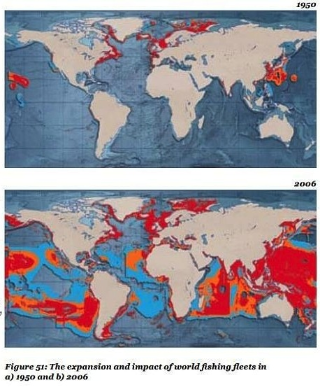 Fishing WWF overfishing chart