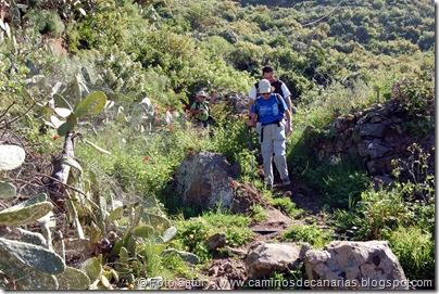 4946 Montaña Alta-Guía