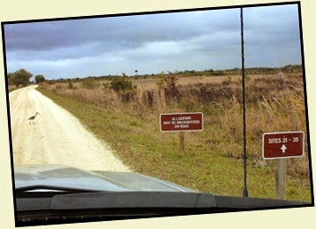 02i - Travel to Kissimmee Prairie SP