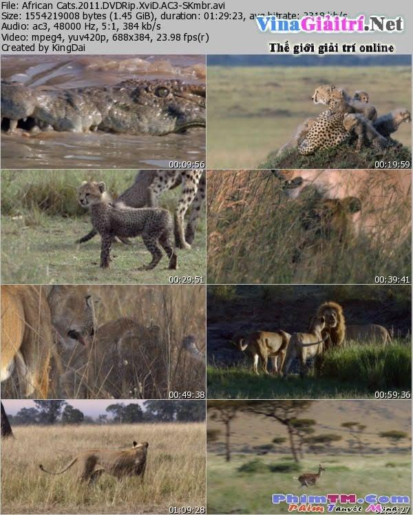 Báo Châu Phi