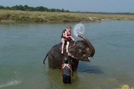 Distractie Nepal: baie cu elefantii