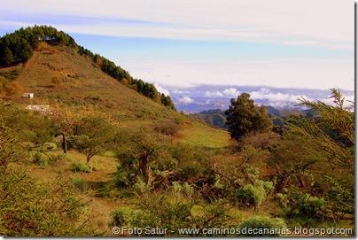 1645 Montaña Pajarito-Valleseco