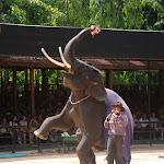 Тайланд 21.05.2012 7-32-38.JPG