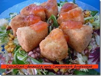4-amanida camembert-ppal-ETI