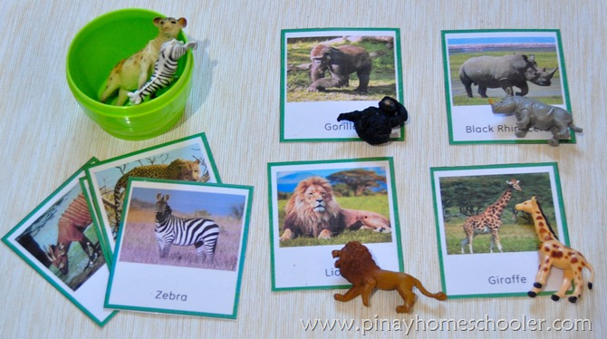 Animal Matching Activity