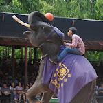 Тайланд 21.05.2012 7-43-33.JPG