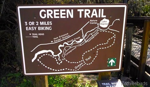 4. green trail at oscer scherer state park-kab