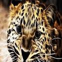 3D Leopard 30 logo