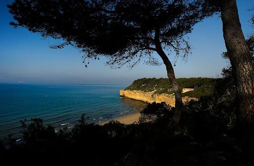 Bosc de la Marquesa i la cala Fonda, platja nudista, espai natural protegit de la Punta de la Mora, Tarragona, Tarragonès, Tarragona