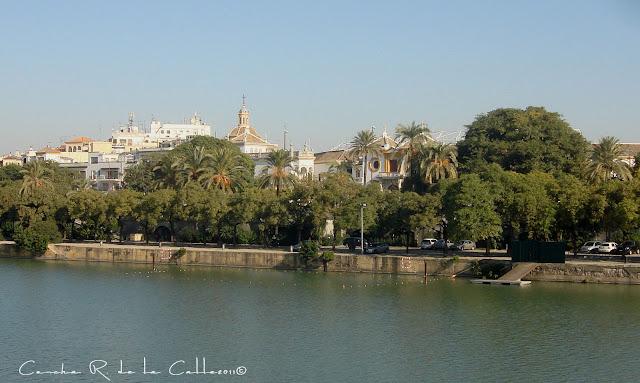Sevilla - Triana 29 - 11 - 2011 (11).jpg