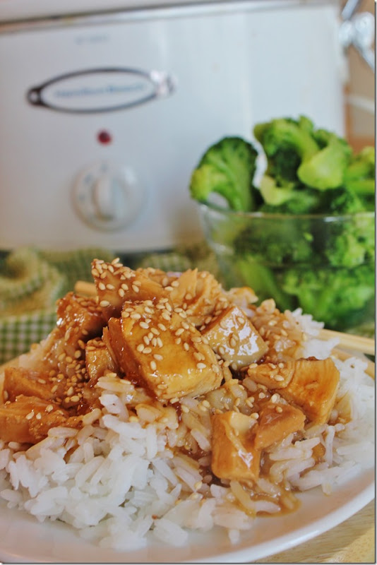 Slow Cooker Recipes: Slow Cooker Teriyaki Chicken